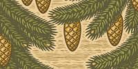 christmas-pine-tree